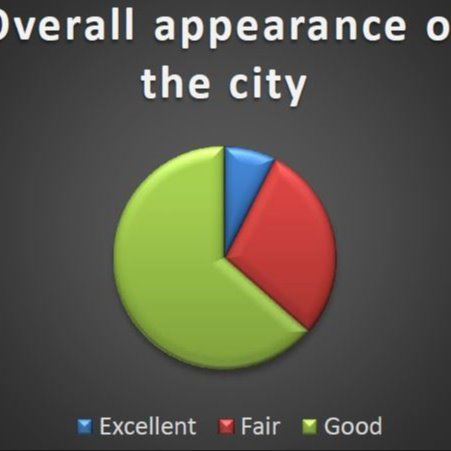 Image of a performance graph on overall appearance of the City of South St. Paul